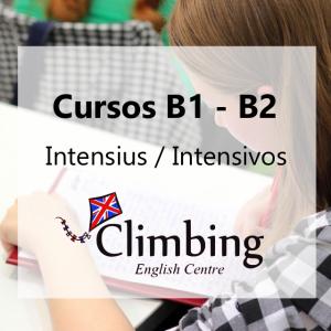 Curs intensiu / Curso intensivo